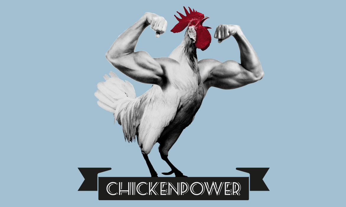 chickenpower